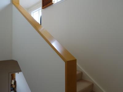 Interior - Painter Tauranga